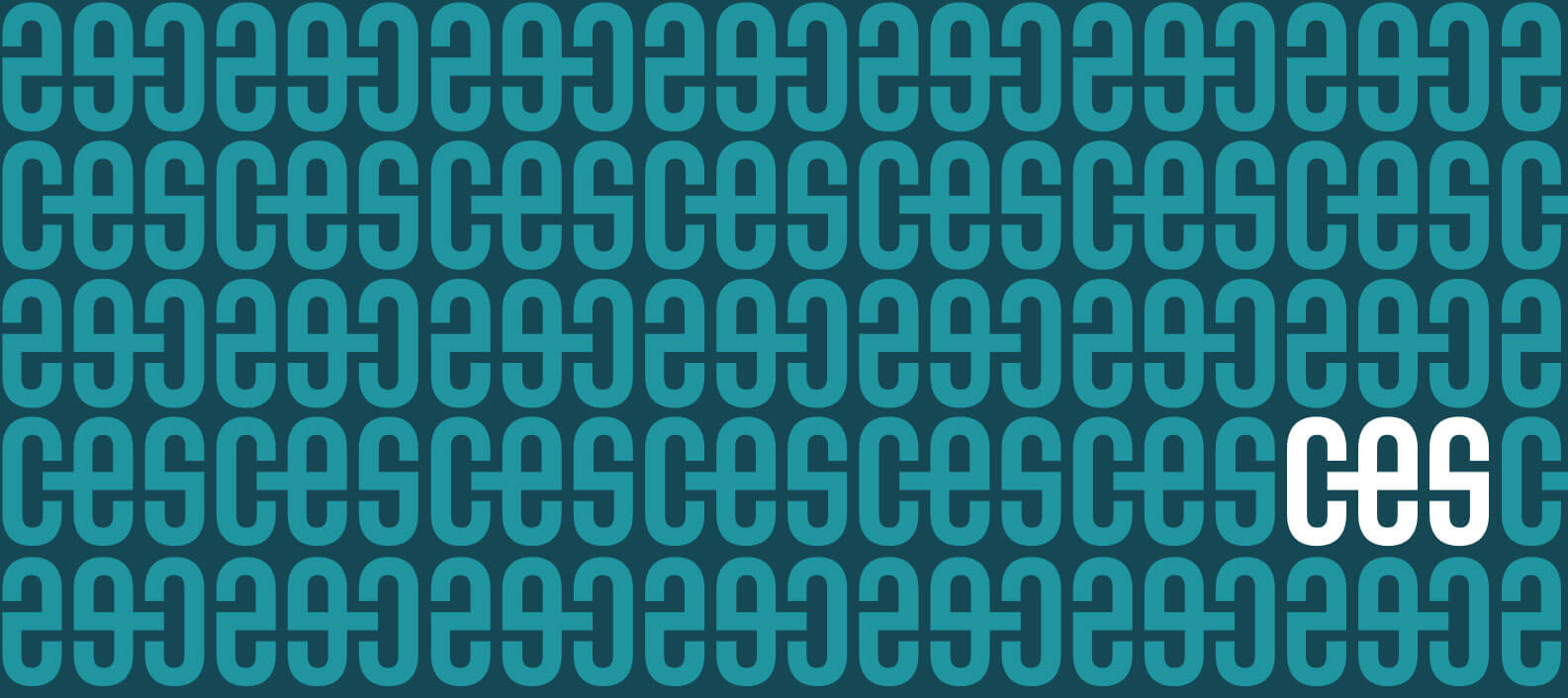 CES Consulting branded pattern by Jacober Creative