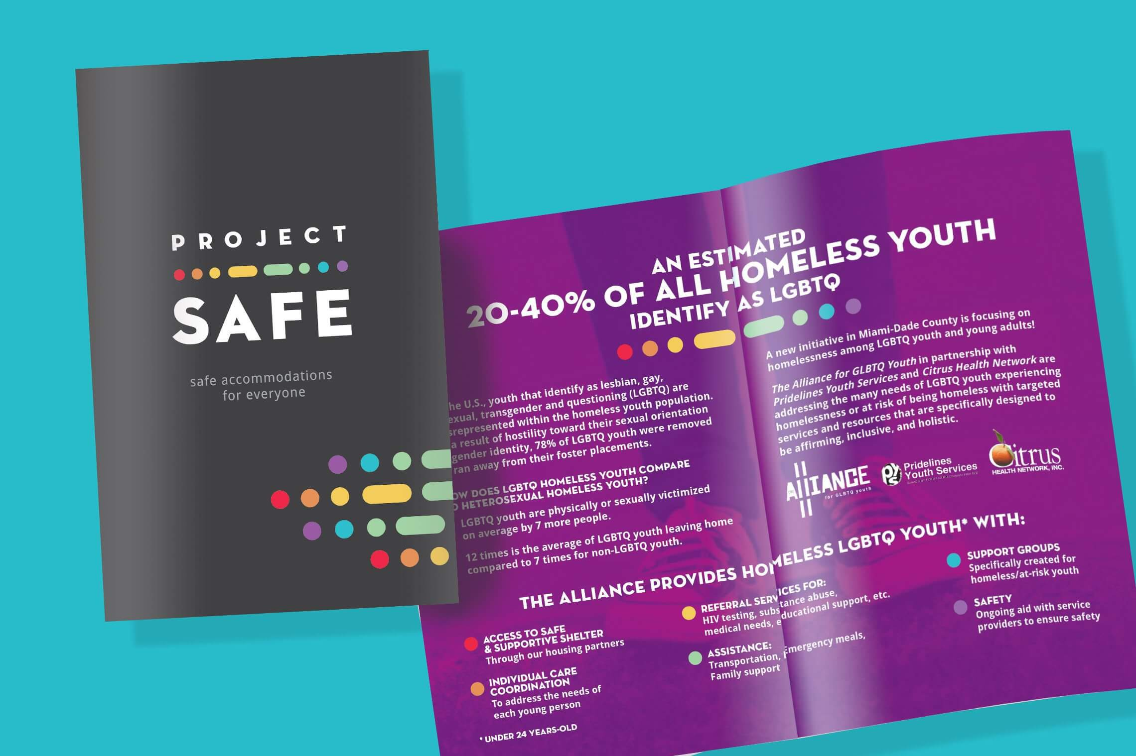 Project Safe marketing pamphlet design